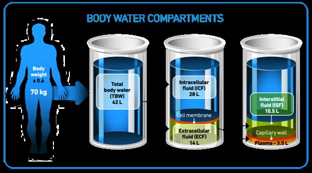 bodywater1 Thirst